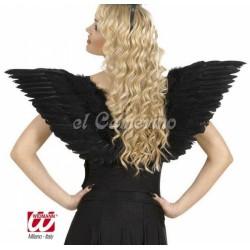 Alas Negras con plumas